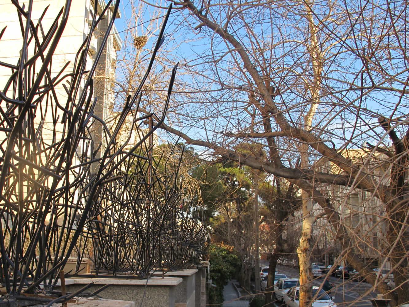 حفاظ بوته ای، حفاظ شاخ گوزنی، حفاظ ساختمان