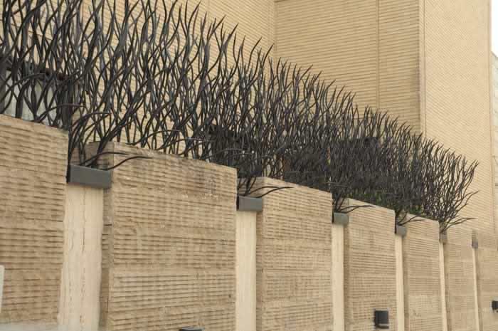 حفاظ شاخ گوزنی دیوار لغاز دیوار لغاز